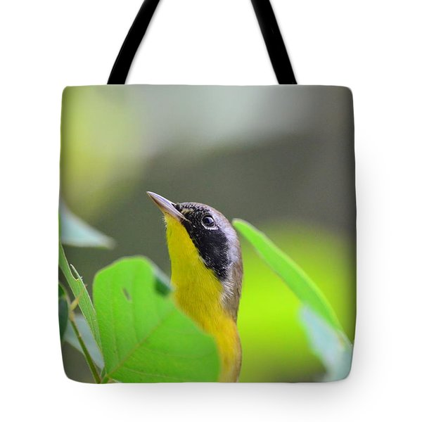 Tote Bag featuring the photograph Beauty by Kathy Gibbons