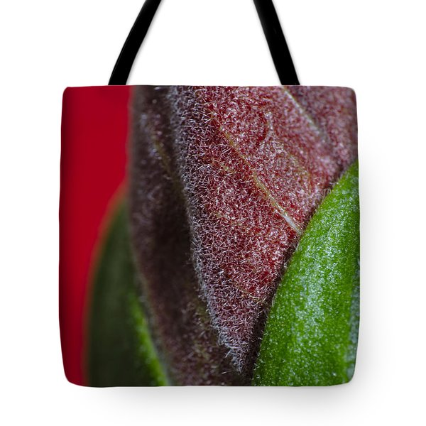 Beauty Of Life Tote Bag by Angelo DeVal