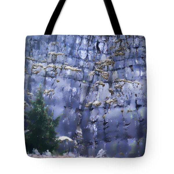 Beauty Of The Gorge Tote Bag by Dale Stillman