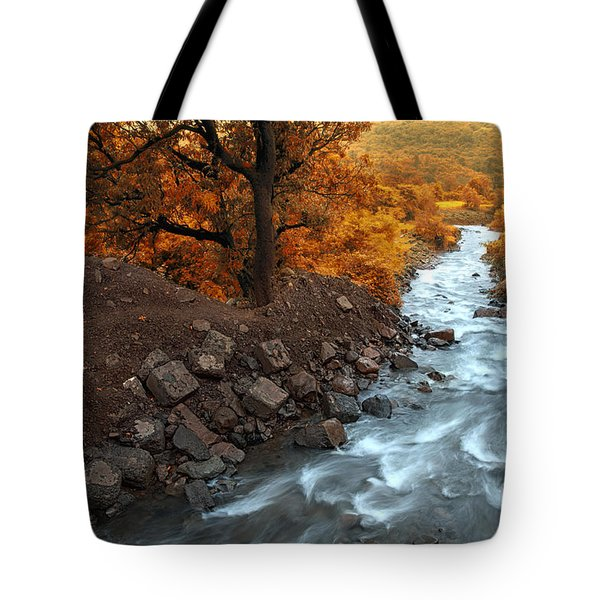 Beauty Of The Nature Tote Bag by Charuhas Images