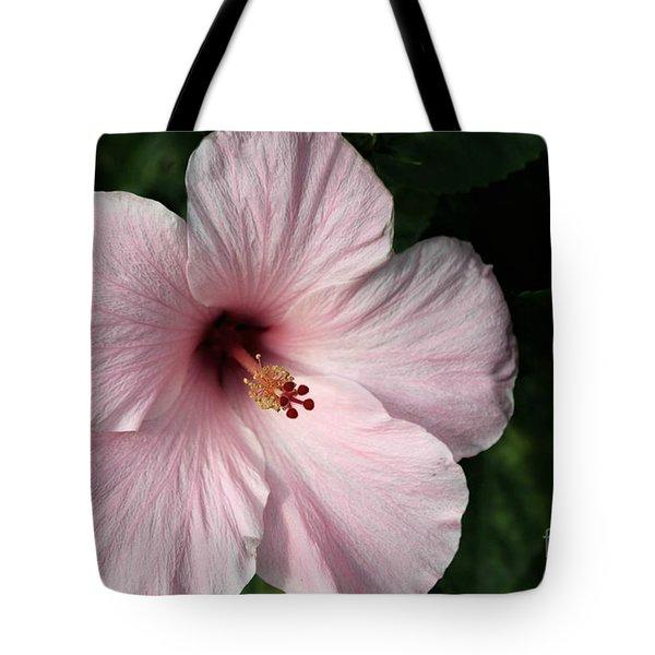 Beauty Of The Tropics Tote Bag