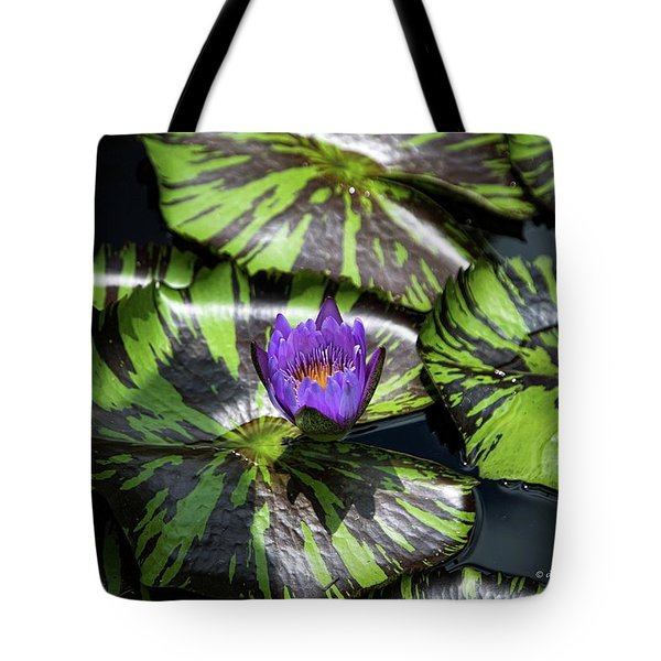 Beauty Rises To The Top Tote Bag by Dennis Baswell