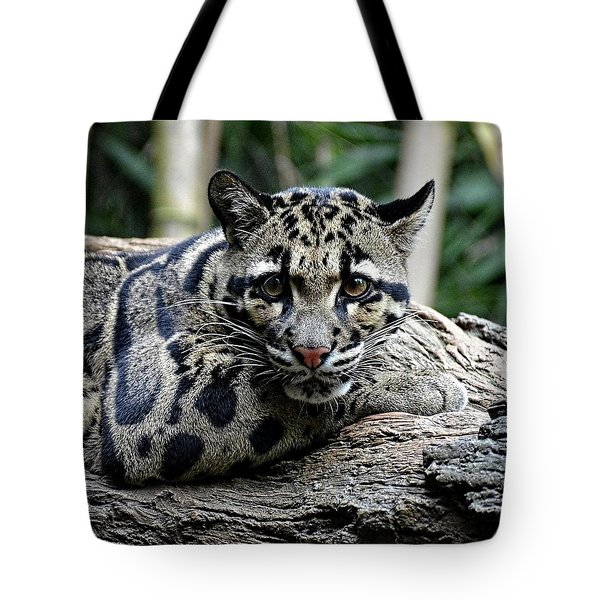 Clouded Leopard Beauty Tote Bag