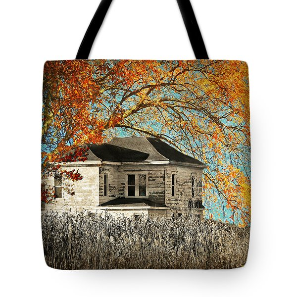 Beauty Surrounds Deserted Home Tote Bag by Kathy M Krause