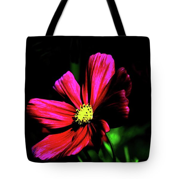 Tote Bag featuring the photograph Beauty  by Tom Prendergast