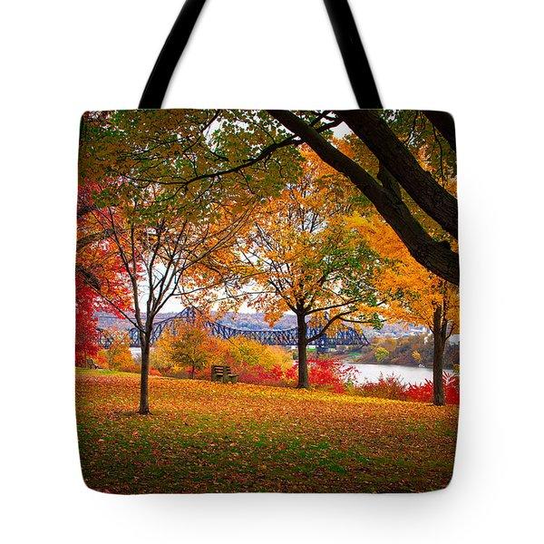 Beaver Park Tote Bag
