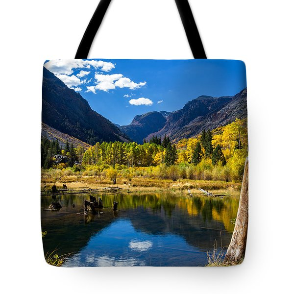 Beaver Pond Tote Bag by Tassanee Angiolillo