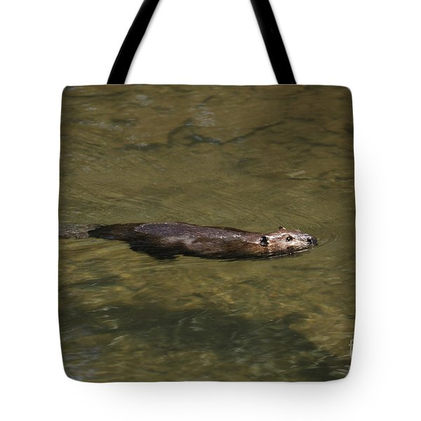Beaver Swim Tote Bag