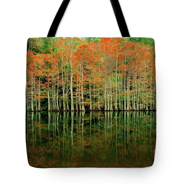 Beaver's Bend Cypress All In A Row Tote Bag by Tamyra Ayles