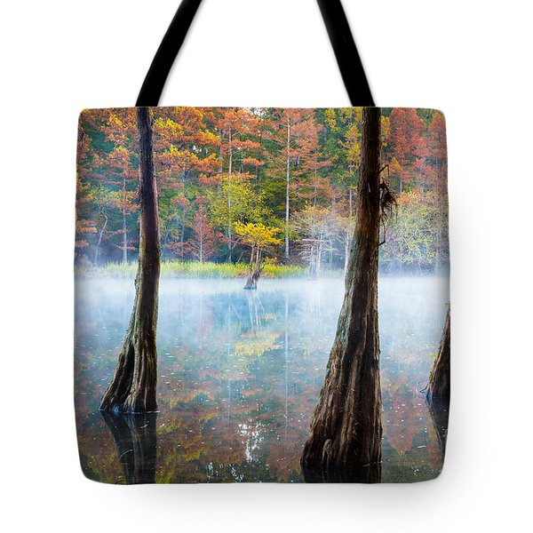 Beavers Bend Cypress Grove Tote Bag