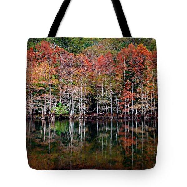 Beaver's Bend Cypress Soldiers Tote Bag