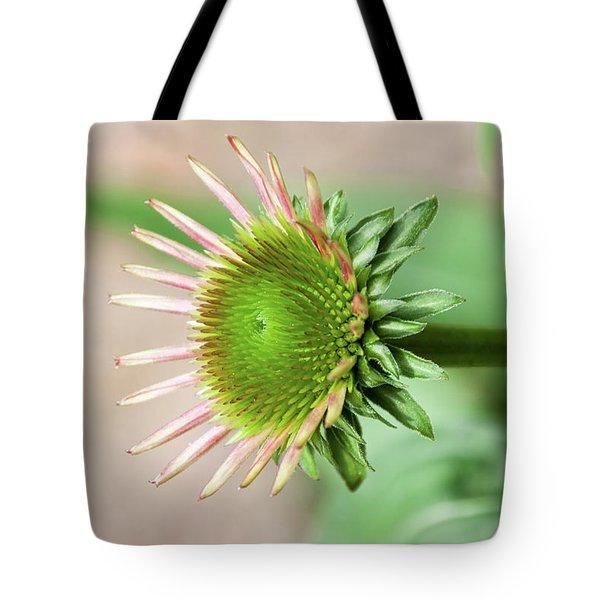 Becoming Echinacea - Tote Bag