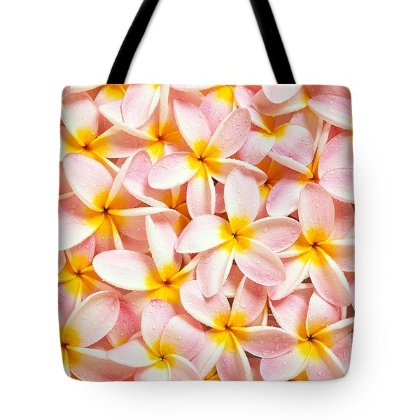 Bed Of Light Tote Bag by Kyle Rothenborg - Printscapes