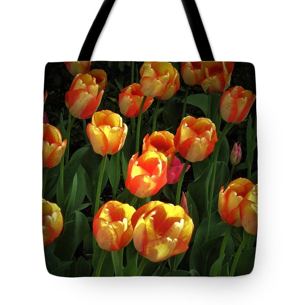 Bed Of Tulips Tote Bag