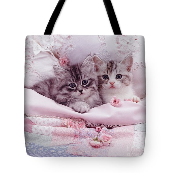 Bedtime Kitties Tote Bag