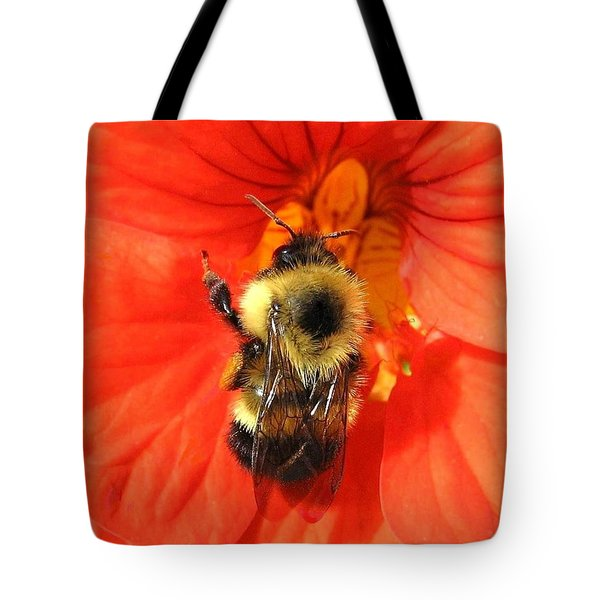 Bee And Nasturtium Tote Bag by Will Borden