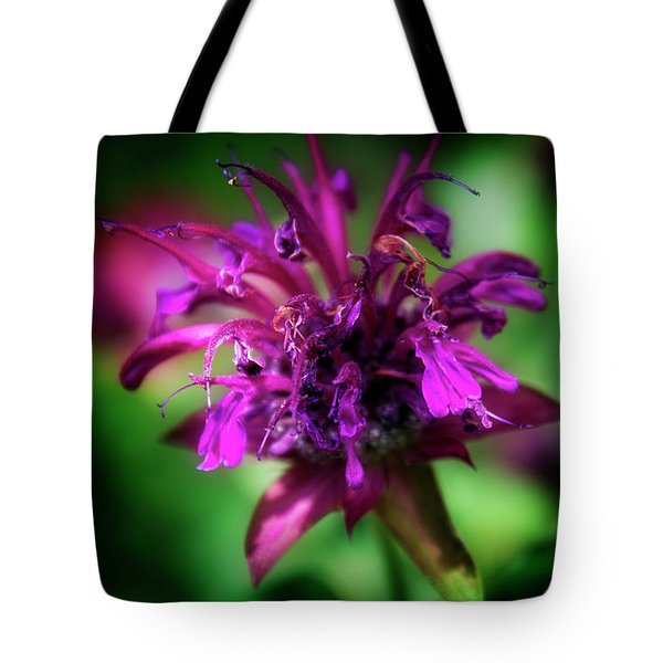 Bee Balm Beauty Tote Bag by Chrystal Mimbs