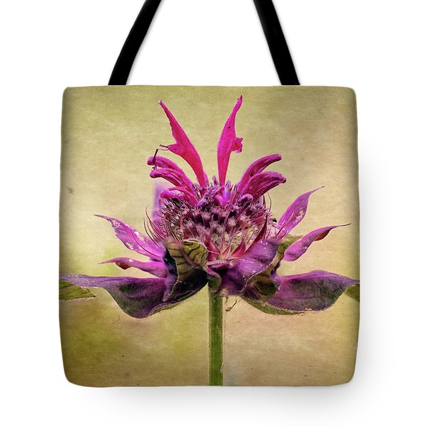 Bee Balm With A Vintage Touch Tote Bag
