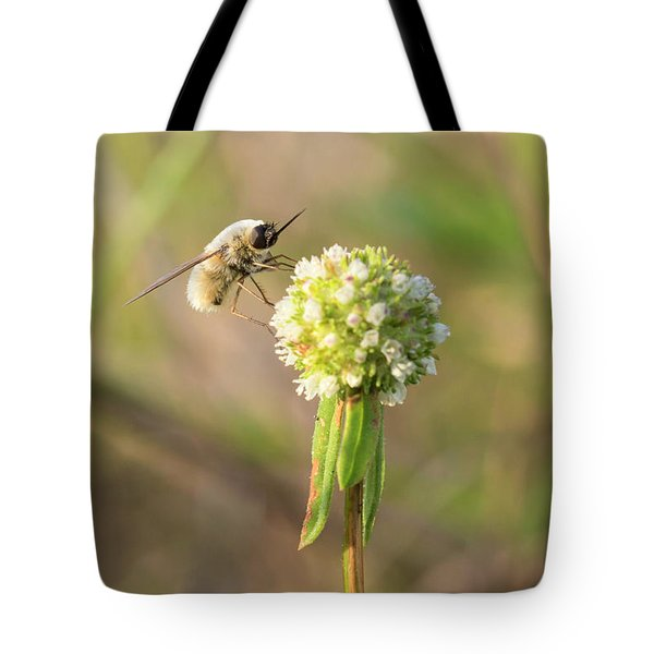 Bee Fly On A Wildflower Tote Bag
