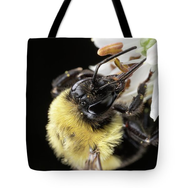 Tote Bag featuring the photograph Bee Macro 1 by Brian Hale