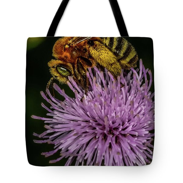 Tote Bag featuring the photograph Bee On A Thistle by Paul Freidlund