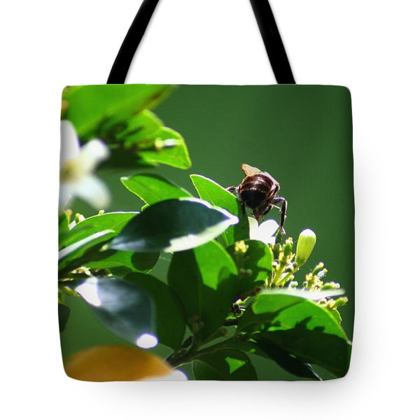 Bee On Jasmine Tote Bag