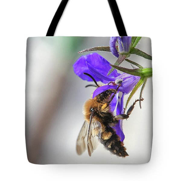 Bee On Purple Flower Tote Bag