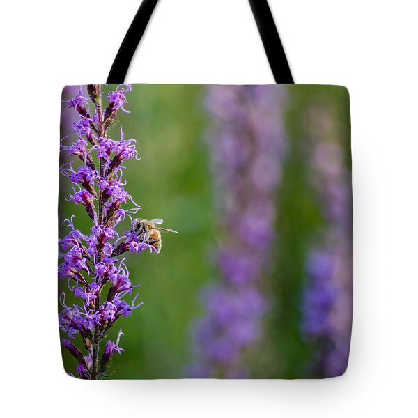 Bee On Slender Gayfeathers Tote Bag