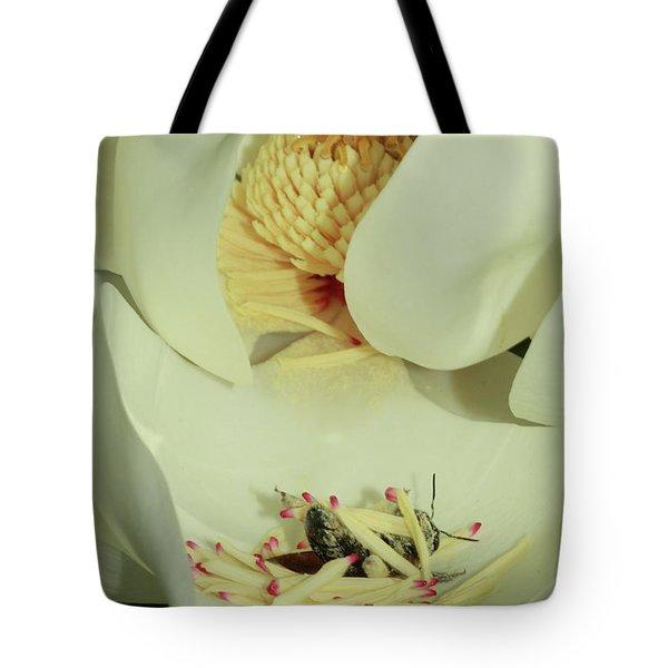 Bee Pollen Overdose Tote Bag by Deborah Benoit
