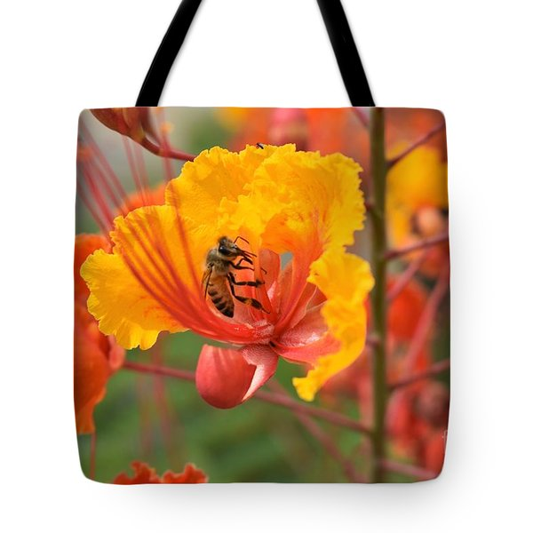 Bee Pollinating Bird Of Paradise Tote Bag