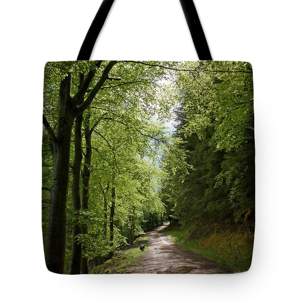 Tote Bag featuring the photograph Beech Avenue In Spring by Phil Banks