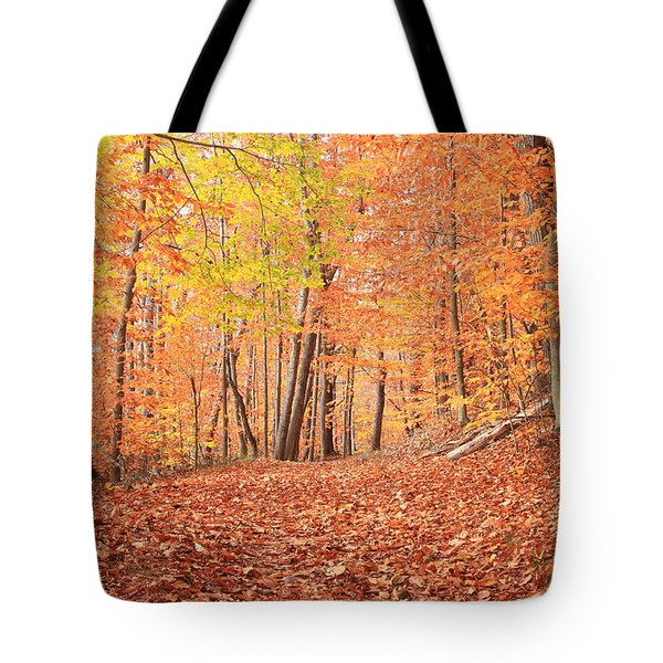 Beech Forest Trail In Late Autumn Tote Bag