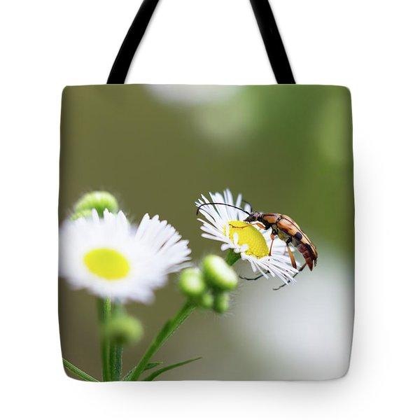 Beetle Daisy Tote Bag