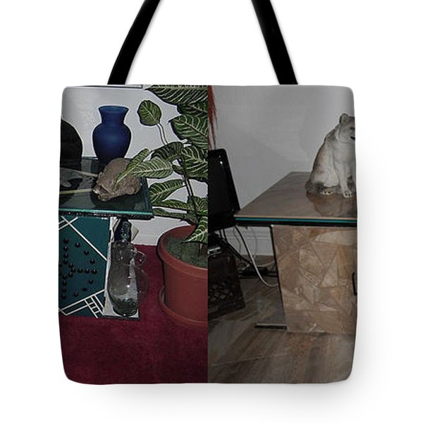 Before And After Tote Bag by Val Oconnor