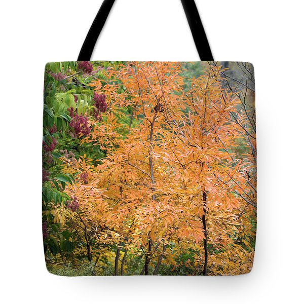 Tote Bag featuring the photograph Before The Fall by Deborah  Crew-Johnson