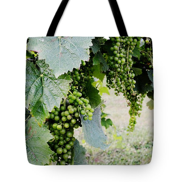 Before The Harvest Tote Bag
