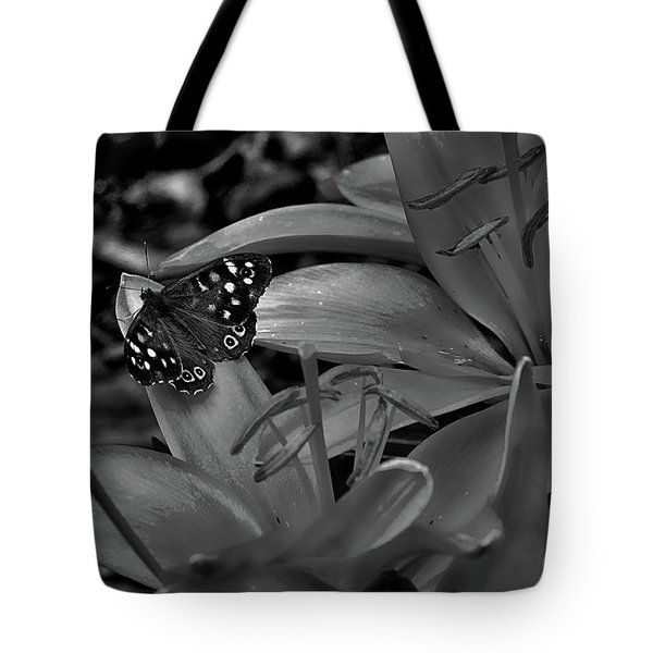 Before The Rain Came Tote Bag