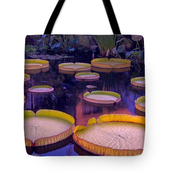 Tote Bag featuring the photograph Begining Of Twilight by John Rivera
