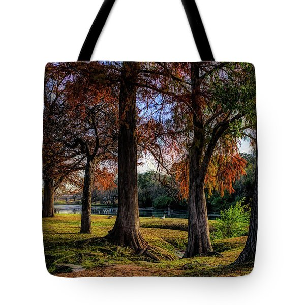 Beginning Of Fall In Texas Tote Bag