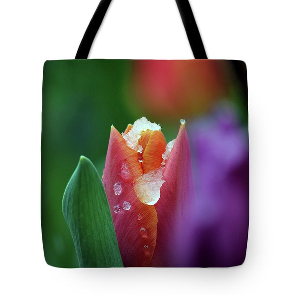 Tote Bag featuring the photograph Beginning Of Spring by Silke Brubaker