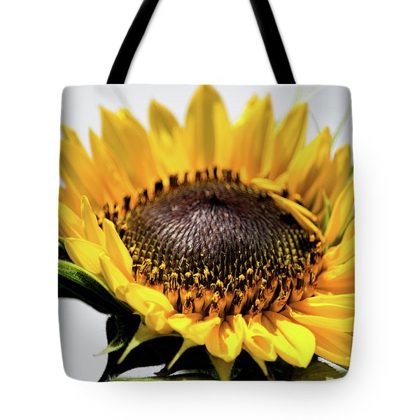 Beginning To Bloom Tote Bag