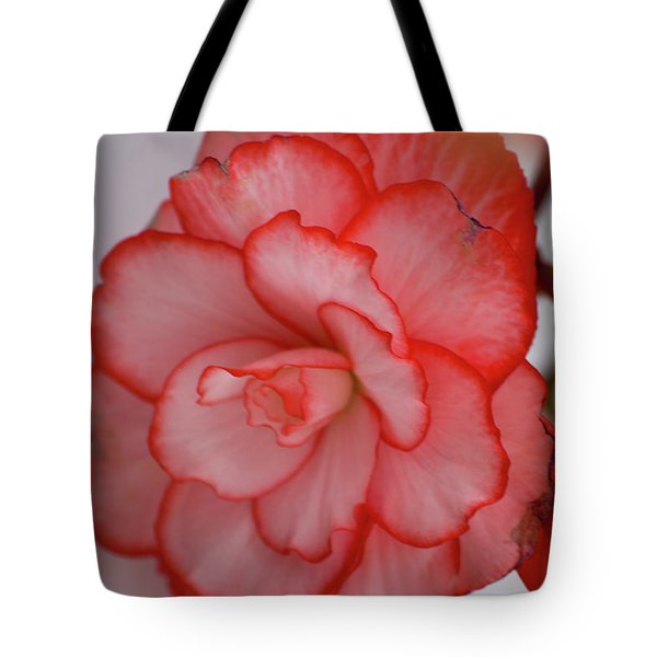 Tote Bag featuring the photograph Begonia Beauty by Lora Lee Chapman