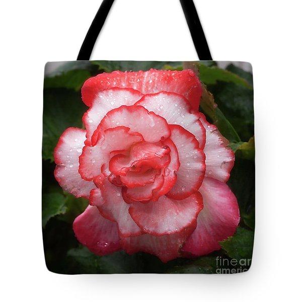Begonia In The Rain Tote Bag