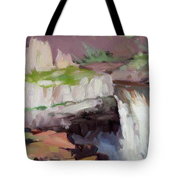 Beholding Palouse Falls Tote Bag