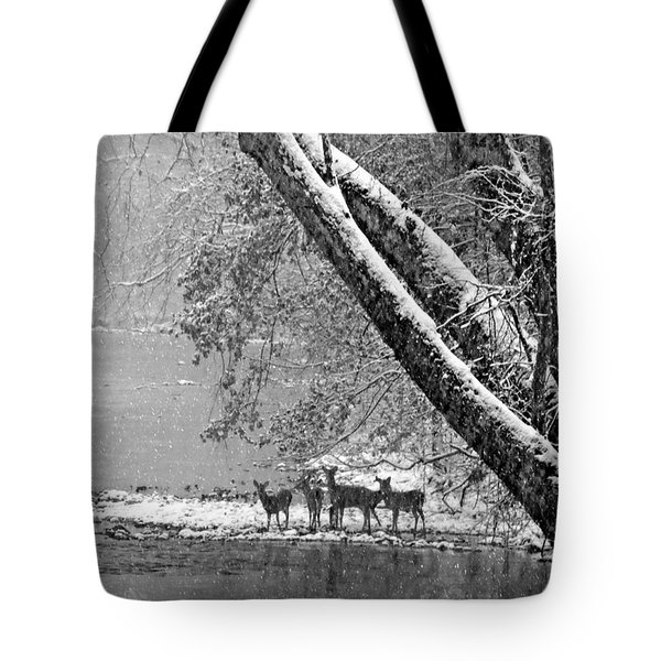 Being Watched Tote Bag