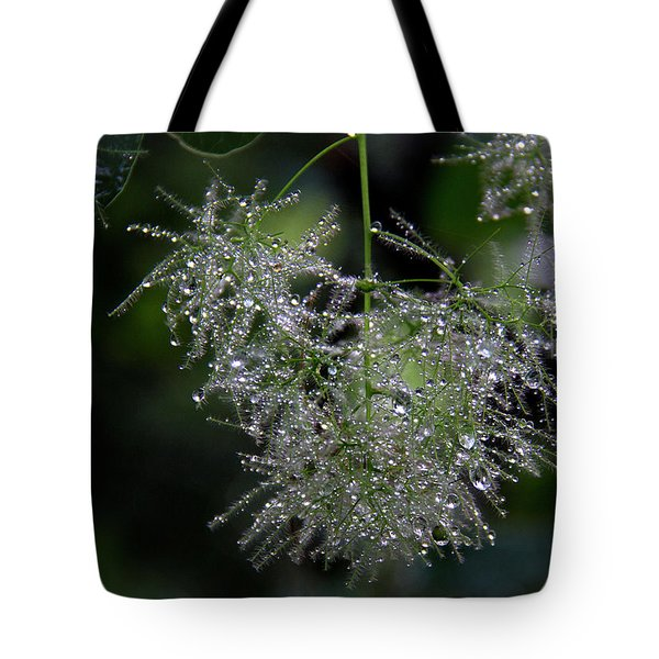 Bejewelled Smoke Tote Bag
