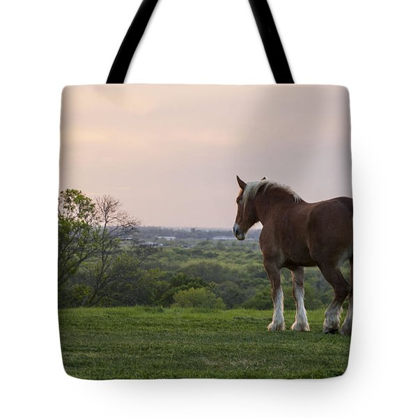 Belgian At Sunset Tote Bag