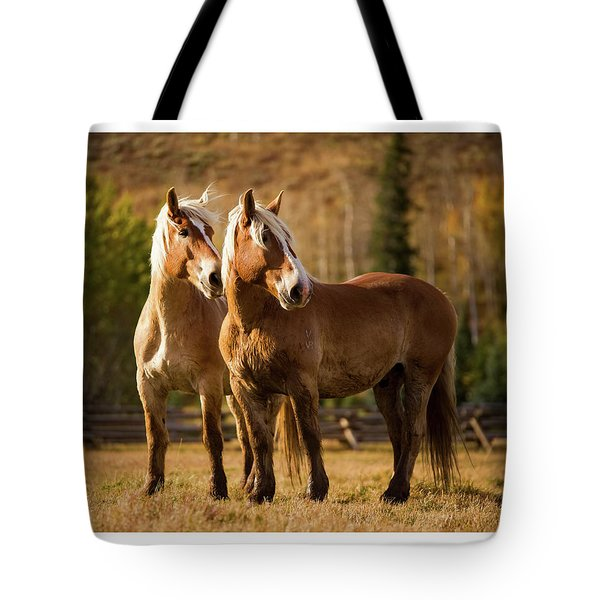 Tote Bag featuring the photograph Belgian Draft Horses by Sharon Jones