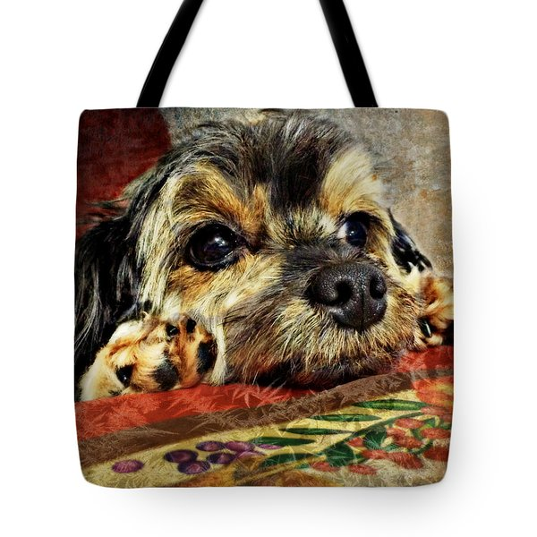 Bella's Thanksgiving Tote Bag by Kathy M Krause