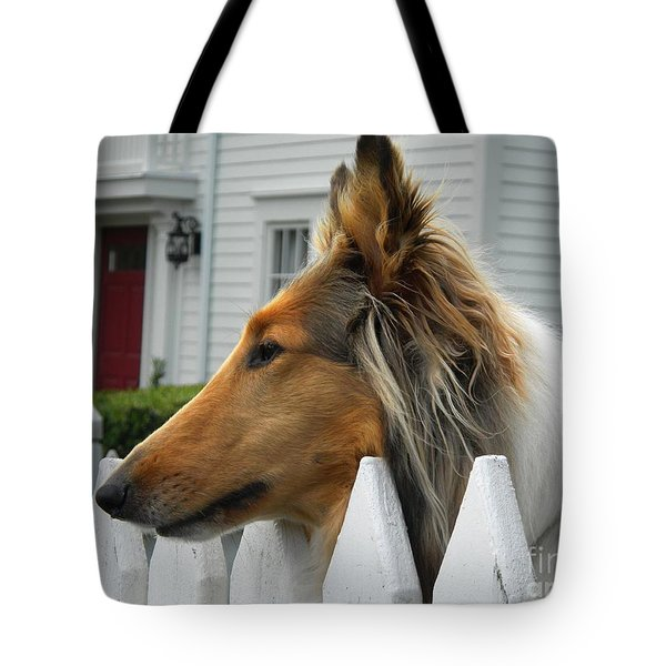 Bellingham Collie Tote Bag